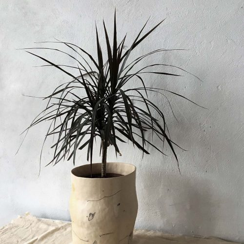 Pot for flowers